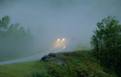 drive in fog